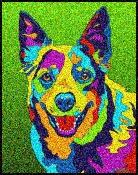 Australian Cattle Dog - Michael Vistia Dog Punch Needle