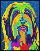 Bearded Collie -  Michael Vistia Dog Punch Needle Pattern & Dog Punch Needle Kits