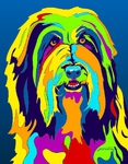 Bearded Collie - Michael Vistia Dog Rug Hooking Pattern & Dog Rug Punching Pattern