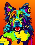 Border Collie - Michael Vistia Dog Rug Hooking Pattern & Dog Rug Punching Pattern