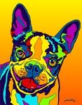 Boston Terrier - Michael Vistia Dog Rug Hooking Pattern & Dog Rug Punching Pattern