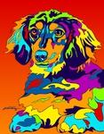 Long Hair Dachshund - Michael Vistia Dog Rug Hooking Pattern & Dog Rug Punching Pattern