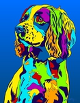 Springer Spaniel - Michael Vistia Dog Rug Hooking Pattern & Dog Rug Punching Pattern