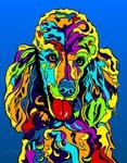 Standard Poodle 2 - Michael Vistia Dog Rug Hooking Pattern & Dog Rug Punching Pattern
